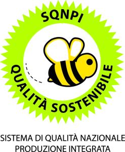 Logo_SQNPI_def
